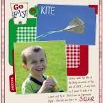 Flying kites…