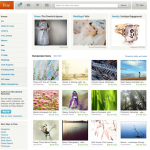 Another Etsy treasury Front Page
