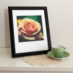 Etsy store up-date – Fine Art prints added