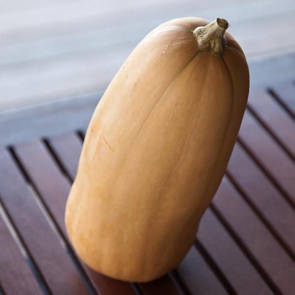 Heirloom Butternut Pumpkin