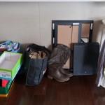 August de-cluttering challenge