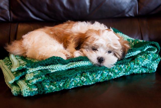Green ripple crochet blanket finished! - Cassandra Madge