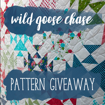 Wild Goose Chase Giveaway - Cassandra Madge